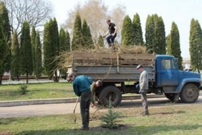 Здійснено роботи з озеленення та благоустрою