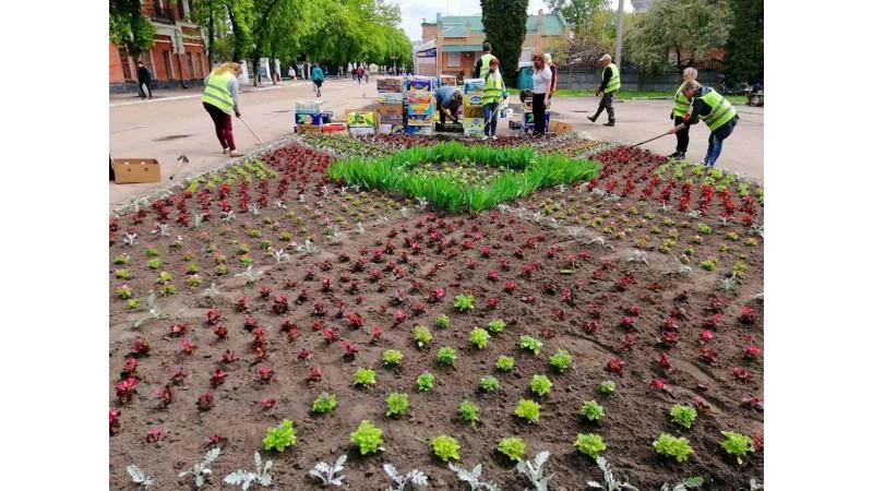 В місті триває весняна висадка квітів