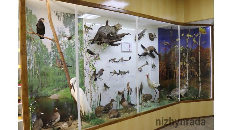 Відбулося відкриття оновленого відділу «Природа Приостер'я»