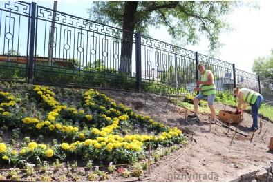 Зробимо наше місто ще більш квітучим та красивим!