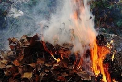 Екологи нагадують: спалювати сміття заборонено